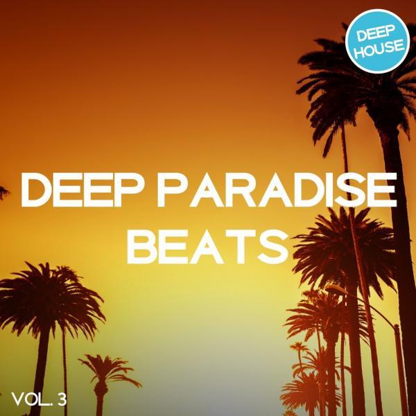 VA - Deep Paradise Beats Vol. 3 [Tronic Soundz] (2018) MP3 скачать торрентом