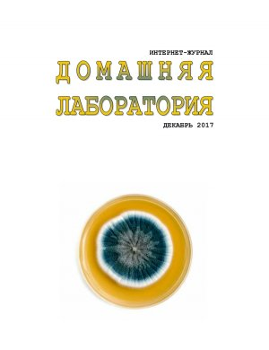 Домашняя Лаборатория (2006-2017) DJVU